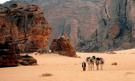 Disputa entre idiomas trava o desenvolvimento da Argélia