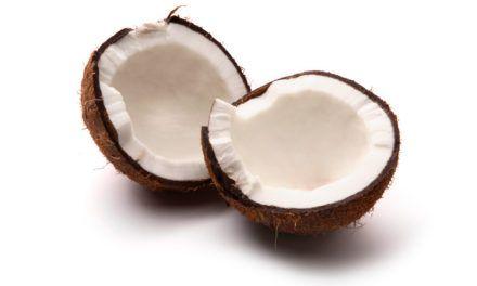 """Origem das Palavras """"Coco"""" e """"Doce de coco"""""""