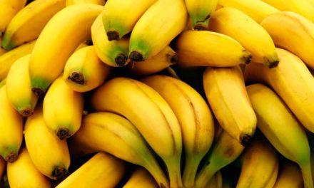 """""""A preço de banana"""""""