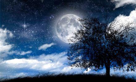 """O Significado de """"Noite"""" em 6 idiomas"""