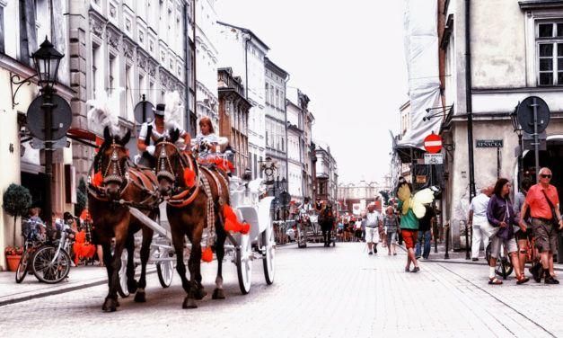 Polonês: Vocabulário e Expressões básicas da Língua Polonesa