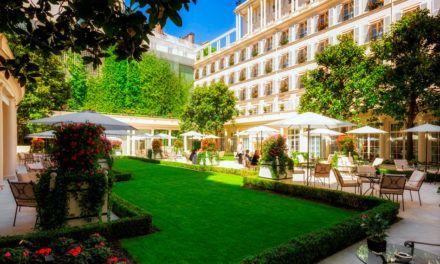 Francês: Le jardin (Jardim)