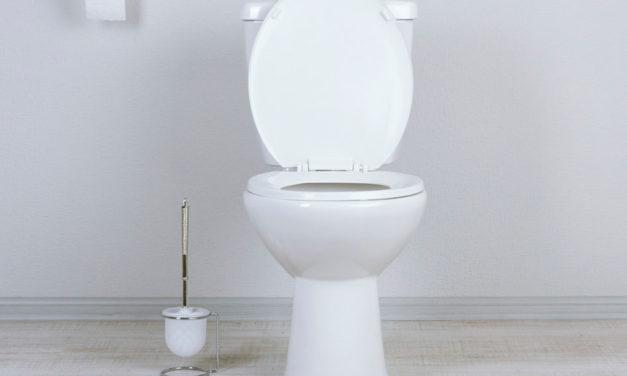 """Origem da palavra """"toilet"""""""